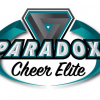 Broderie logo Paradox